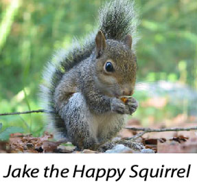 Jake the Happy Squirrel, by Causeway, Mind in Bicester