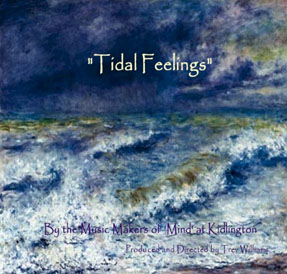 Tidal Feelings - by Mind in Kidlington